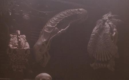Itt kezdődött az Alien Vs. Predator-őrület