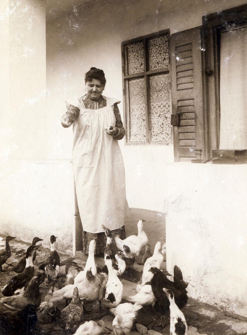 A pesti gazdaasszony a zebegényi vagy szodói baromfiudvarban. Erdőssyék 1901-ben egy utazásuk előtt ezzel búcsúztak Éderéktől. Mindezt megtehették volna az akkor divatos névjeggyel is. A névkártyához pontos etikett tartozott, amellyel a művelt társasélet szereplőinek pontosan tisztában kellett lennie. Elutazás alkalmával a jegy sarkára a b. v. (búcsút venni) betűket kellett felírni és személyesen kellett átvinni a címzett lakására.