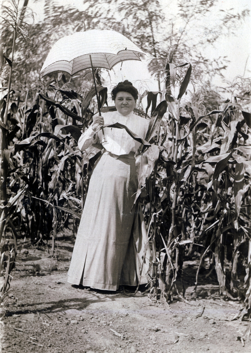 """Bár a kukoricás megtekintéséhez Erdőssyné egy falusi tartózkodáshoz illő alapdarabot választott, a századfordulós napernyődivatnak csak a csillagos ég szabott határt: volt fodros és hímzett, csipke és selyem csoda is. Ruhája """"praktikus, nem gyűrődő s igen egyszerű szabású"""", mely """"este még majdnem ép úgy néz ki, mint reggel"""". Csak reménykedni tudunk, hogy a jól választott ruhák és kiegészítők mellett az alsóruhák is """"kifogástalanok és az öltözethez illők voltak,"""" mert """"a legdíszesebb öltözetű nő, ha ruháját felemelve, piszkos alsószoknyát s öltözetének meg nem felelő cipőt és harisnyát láttat — azonnal osztályozva van, s legyen bármilyen születésű, nem teszi azt a hatást, mit valódi úri nőnek tennie kellene."""""""