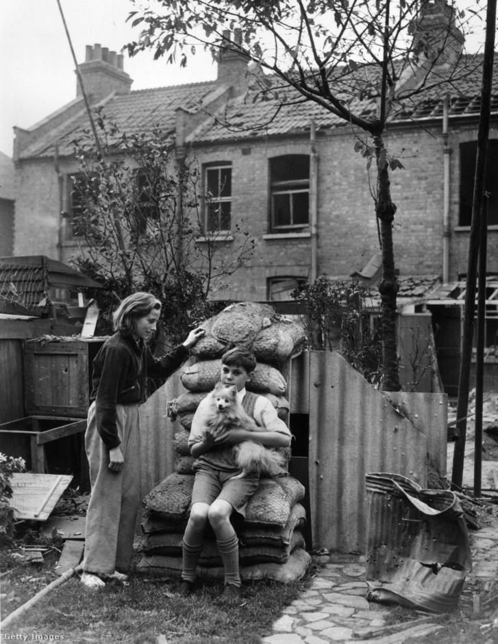 Kisfiú kutyájával egy délnyugat-londoni óvóhely bejáratánál