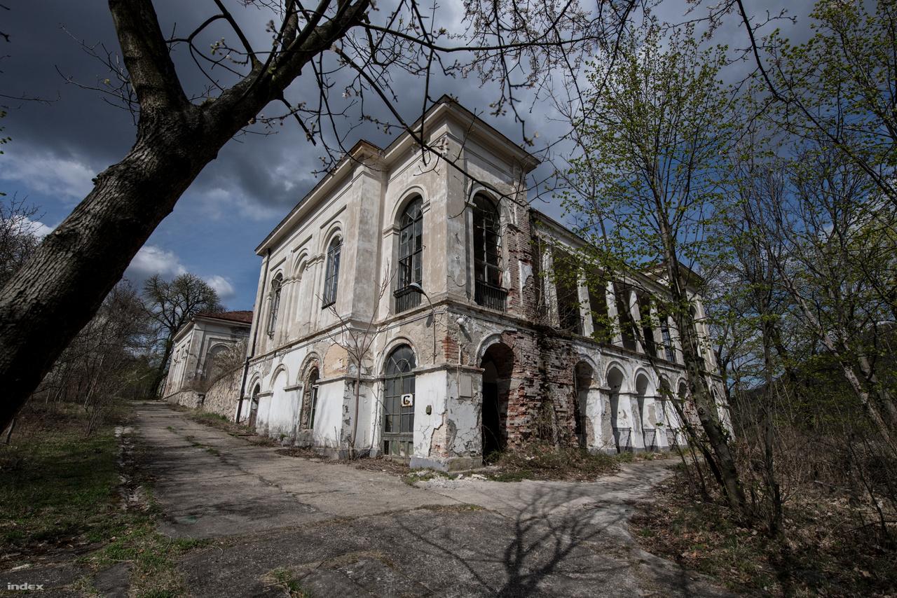 Vendéglő már az 1830-as évektől működött ezen a helyen, de a ma is álló pompás épület csak 1856-ra készült el. A kor menő építésze, Hild József tervezte, akárcsak a környék több klasszicista villáját.Szellemes, egyszerű, átlátható, a környezetéhez tökéletesen alkalmazkodó, gyönyörű ház az egykori Fácán épülete.