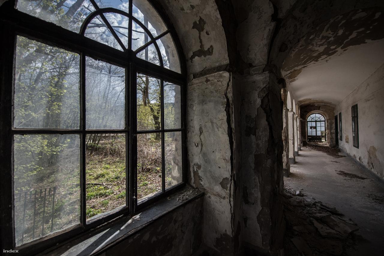 """A ház az első világháború után kicsit vesztett fényéből (persze azért nem úgy nézett ki, mint most). Krúdy így írt róla 1921-ben megjelent Nagy Kópé című regényében:""""…álmok, szerelmek, ismeretségek, találkák és rügyező kedvek eljöttek a Fácán ódon udvarára, végigjárták a bolthajtásos folyosókat, felszaladtak a ropogó lépcsőkön, belenéztek a kopott aranyozású tükrökbe... A Fácán árkádjai alatt volt terítve (míg az udvaron tánc folyt). A kocsmáros még abból az időből ismerőse Rezeda úrnak, mikor szerelemit télen is a Fácánba hordta szánkán…"""""""