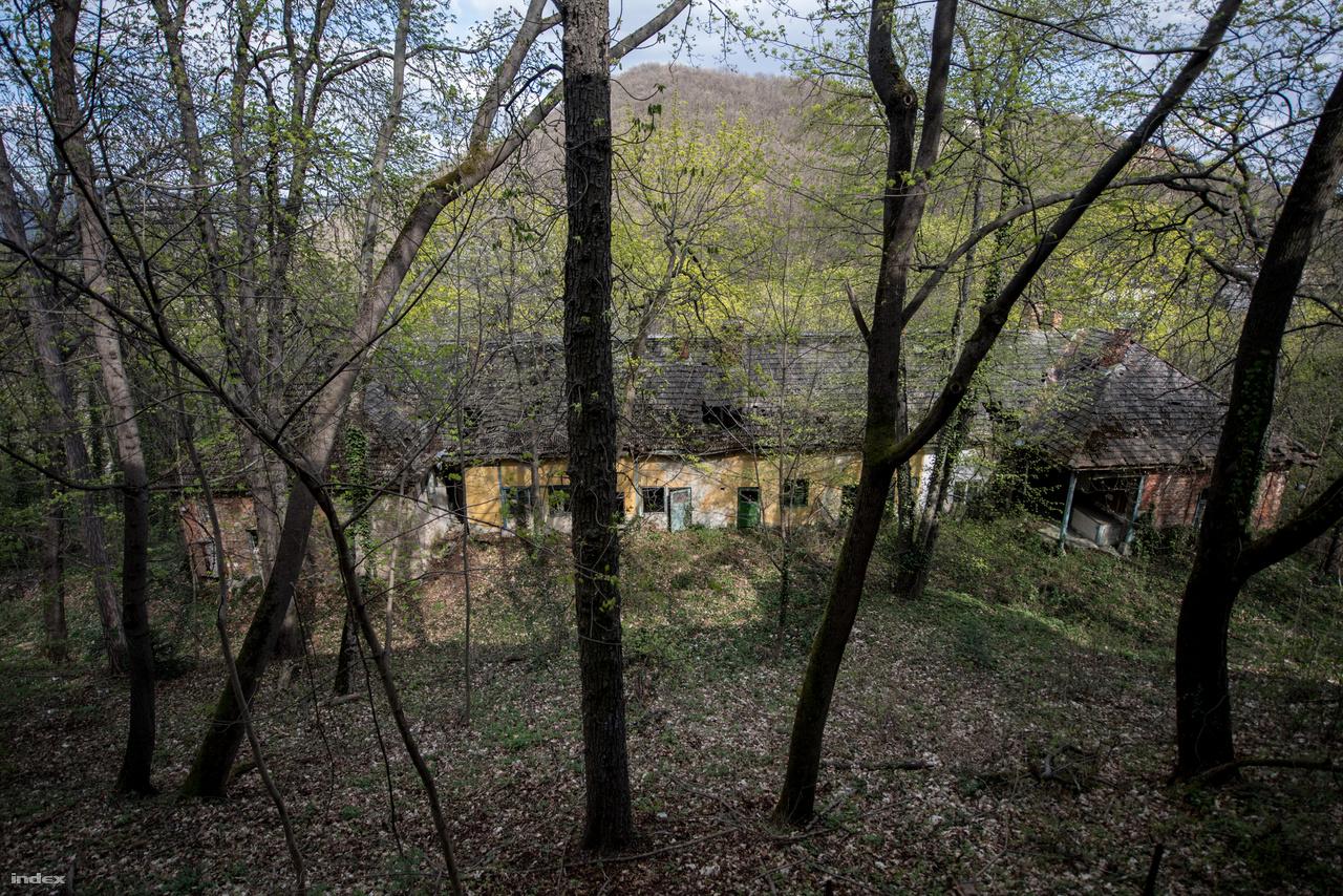 A tulajdonképpeni Fácán alatt egy másik ház is kapaszkodik a hegyoldalban. Itt voltak a cselédlakások.
