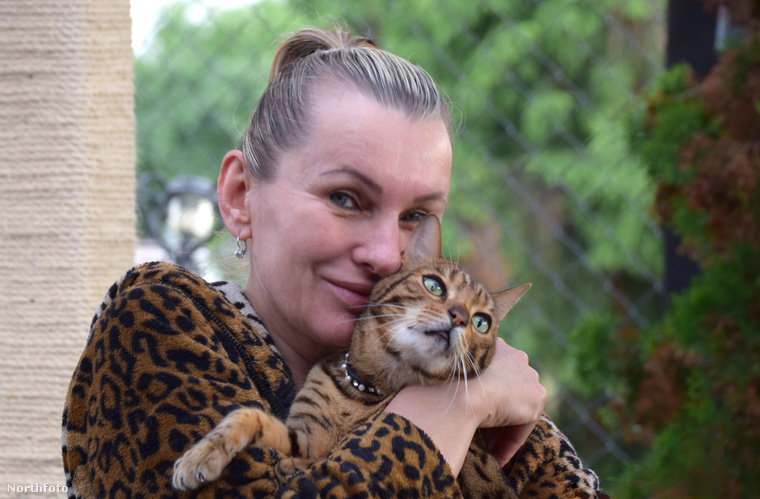 Csehországban él egy Ivana nevű hölgy, akit alighanem nyugodtan kinevezhetünk a cicák védőszentjének