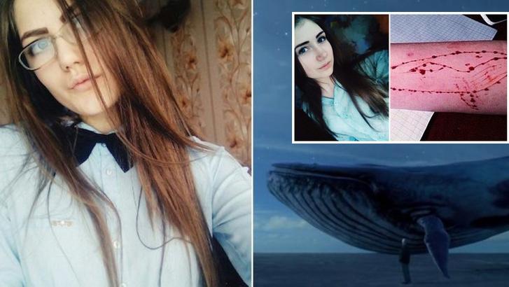 blue whale game 2 79591400
