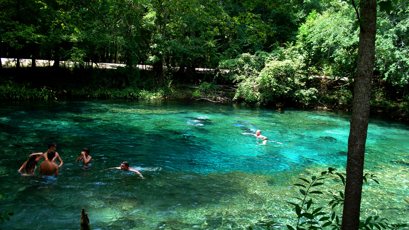 ginnie springs cover
