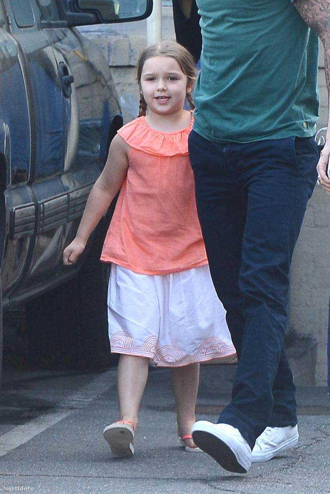 A kedves, mosolygós kislány még csak idén júliusban tölti be majd hatodik életévét.
