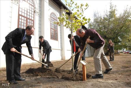 Gegesy Ferenc fát ültet az elhunyt Cseh Tamás emlékére