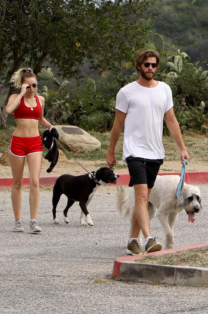 A harmadik szőrös egyén nem más, mint a 27 éves Liam Hemsworth színész, akivel már kétszer jegyezték el egymást, és bizonyos körülmények arra mutatnak, hogy titokban össze is házasodtak.