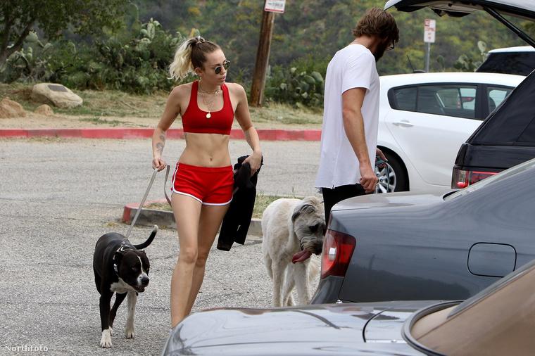 Most, hogy ezt tisztáztuk, már csak azt érdemes tudnia, hogy az ifjú pár április 6-án Los Angelesben osztozott a kutyasétáltatás örömeiben.