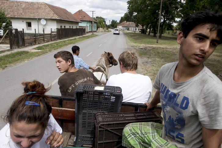 Közmunkások indulnak egy szekéren borsót szedni Nyáregyházán