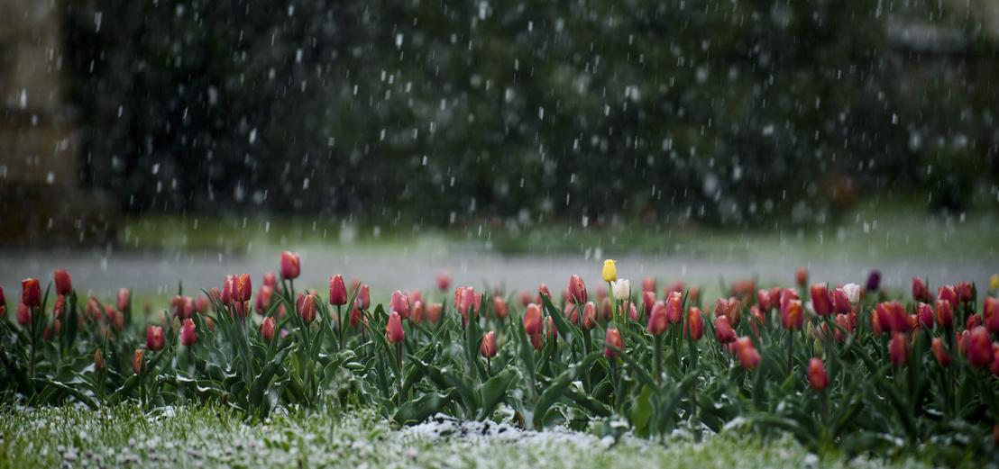 Index - Belföld - Fél méter hó esett Dobogókőn 138b692cb8