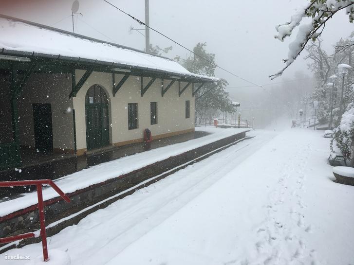 A fogaskerekű Széchenyi-hegyi végállomását is teljesen belepte. 1fc5ad0deb