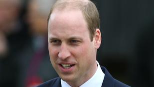 Vilmos herceg is beszélt anyja, Diana hercegnő tragikus haláláról