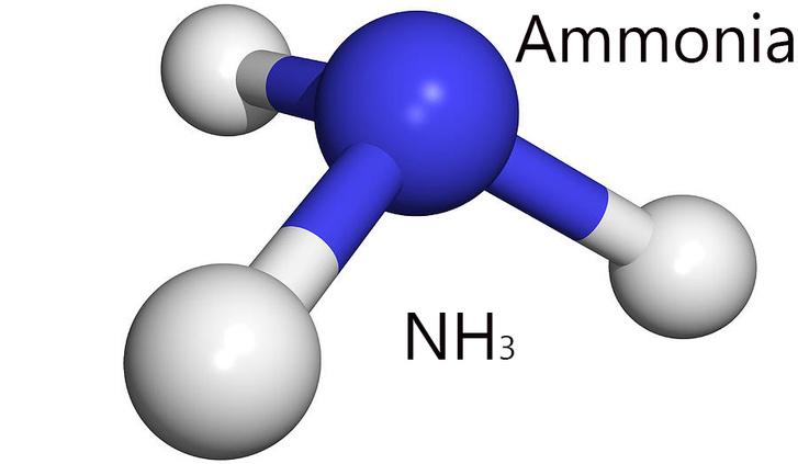 Ammonia NH31