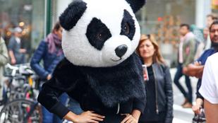 Emily Ratajkowski váratlanul pandává változott