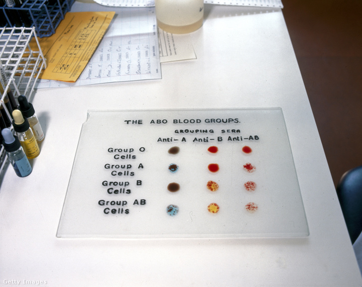 Típusok tesztelésére hivatott paletta Londonban 1980-ban