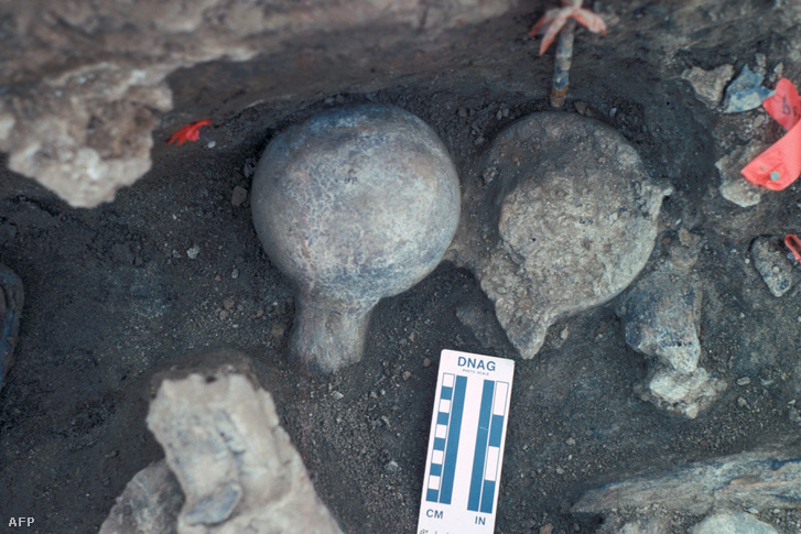 Az új leletek egy csoportja az ásatás helyszínén.