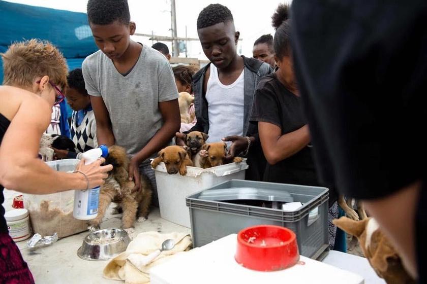 Az állatmentőkhöz érve a gyermek bevallotta, sajnos nincs pénze arra, hogy megfelelően etesse a kutyust.