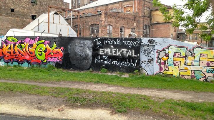 Index - Kultúr - Művelt vandál tüntette el a hatalmas Bud