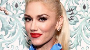 Aligha számított rá Gwen Stefani, hogy ha repülőre száll, beszakad a dobhártyája
