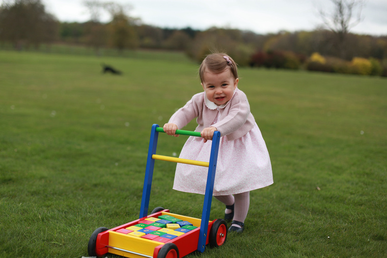 Charlotte szülei nagyon figyelnek arra, hogy soha ne pózoljanak gyermekeik méregdrága játékokkal -a képen látható fakocsi csupán 20 ezer forint körül van.Egyébként a hercegnő számos ajándékot kap a világ minden pontjáról, például a magyar Herendi Porcelánmanufaktúrától egy különleges teáskészletet