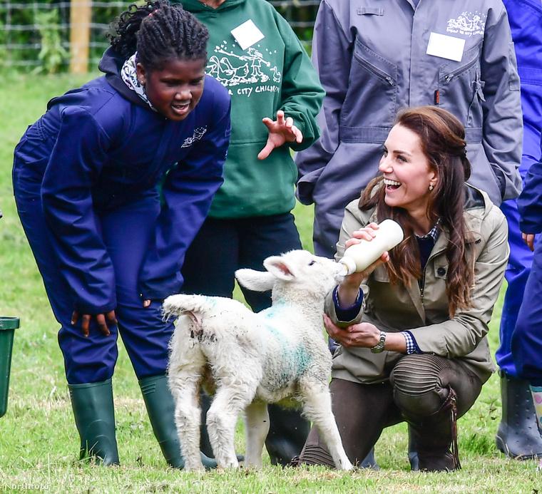 A hercegné a Farms For City Children nevű alapítvány meghívására érkezett a farmra, ahol pszichológiai problémákkal küzdő, nagyvárosi gyerekek ismerkedhetnek meg a vidéki élet csodáival