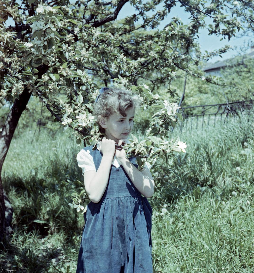Szűcs Ervin kisebbik lánya, Glázer Attila nagynénje, Katalin (később Jakobi Lászlóné), aki hat évvel nővére születése után, 1952-ben, jött világra.