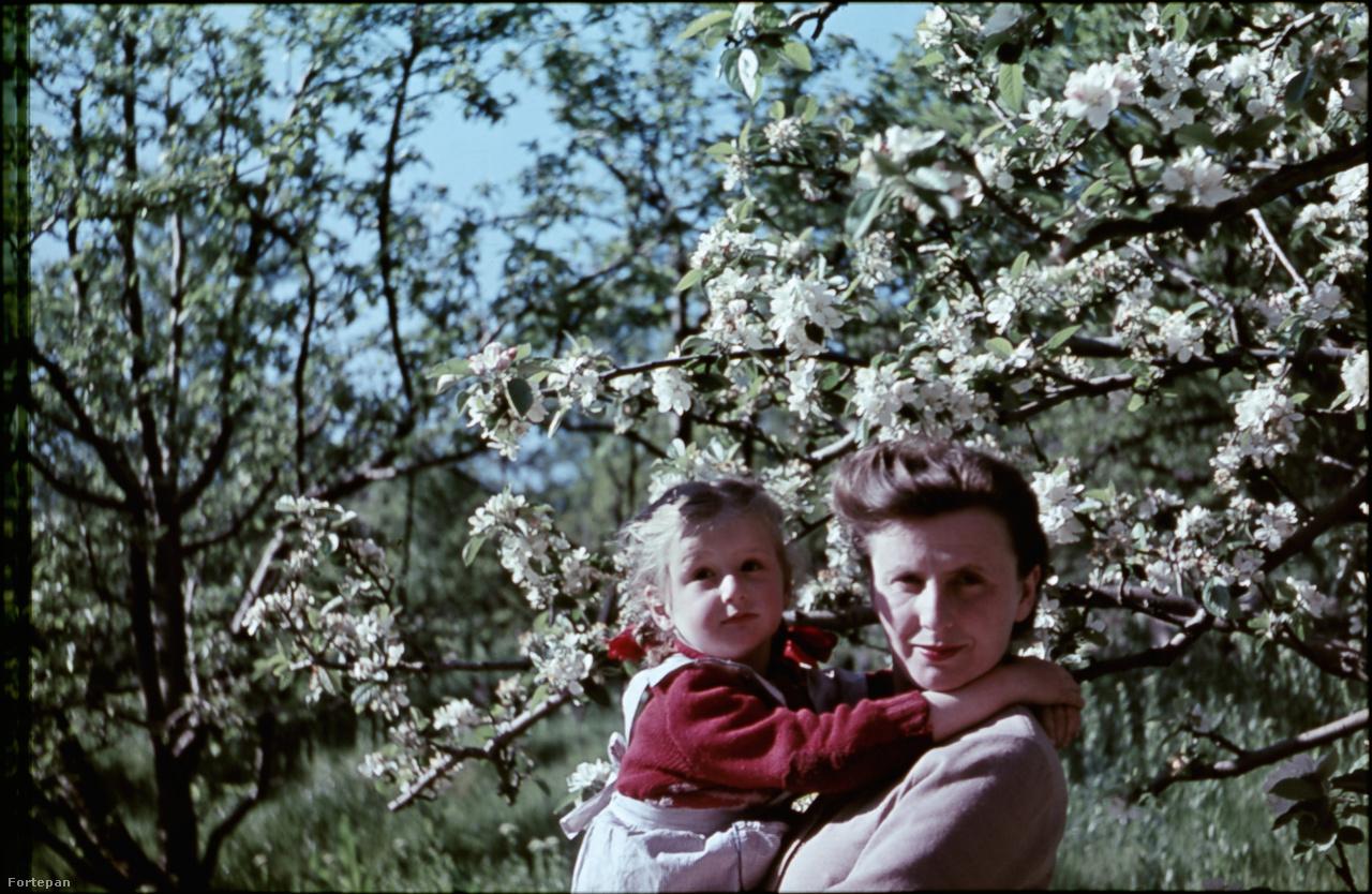 """Glázer édesanyja, Szűcs Györgyi a felszabadulás napjaiban fogant, majd 1946 februárjában született meg. A szülni készülő asszonyt az amerikai nagykövetség autójával vitték kórházba. """"Nem flancból, csak épp nem volt elég mentőautó a városban"""" – fűzi hozzá a történethez Glázer Attila."""