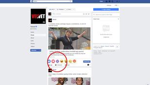De mit jelent a lila virág a Facebookon?