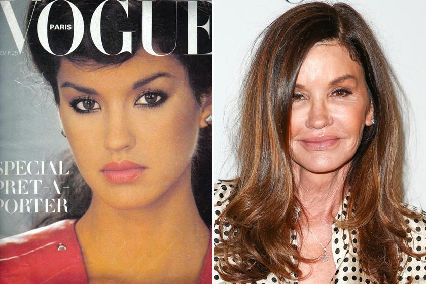 Janice Dickinson 1979-ben a Vogue címlapján és friss fotóján.
