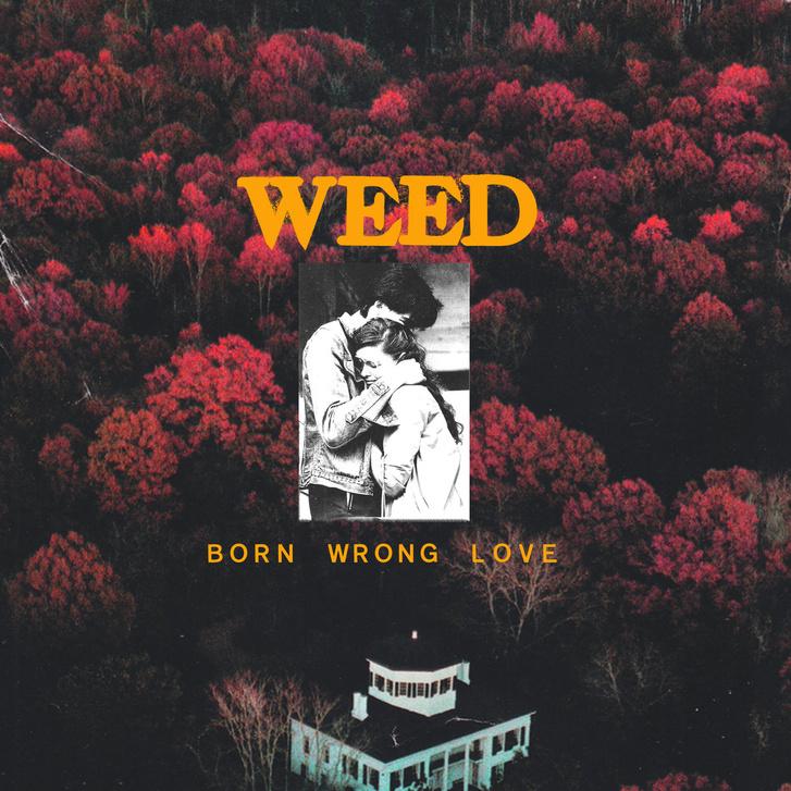 slowd weed