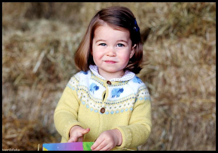 Charlotte hercegnő, a brit királyi család tündéri tagja ezen a héten ünnepelte második születésnapját - ebben a galériában összefoglaltuk, hogy miért is annyira tüneményes a kis hercegnő.