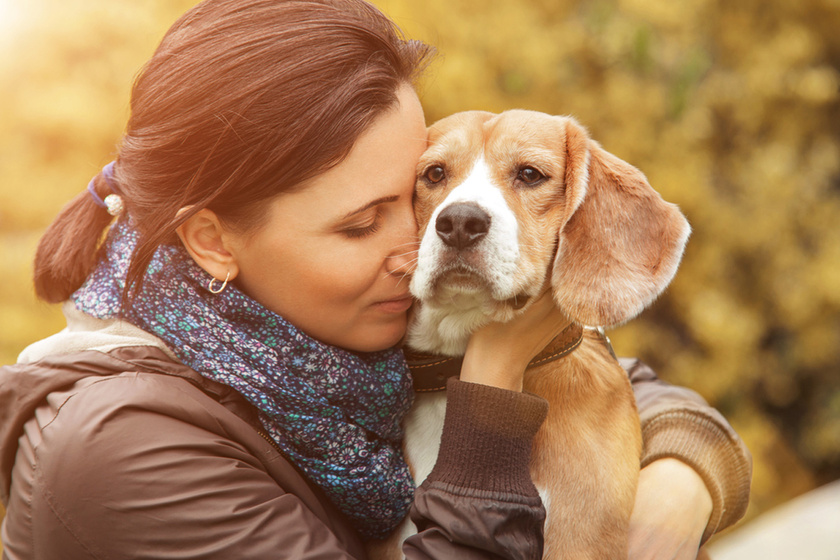 Állatok, akik meggyógyították a gazdijaikat: az életüket köszönhetik nekik