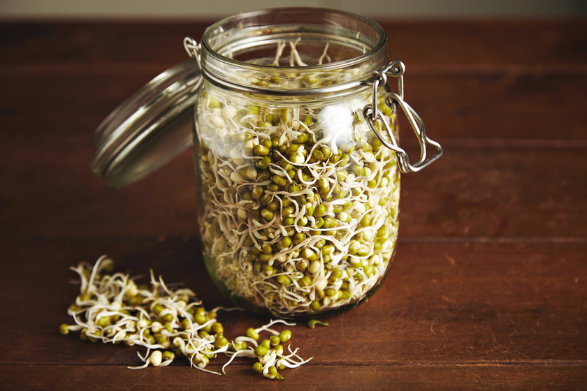 A szójababcsírában minden nélkülözhetetlen aminosav megtalálható. Rengeteg benne az E-vitamin, amely semlegesíti a szabad gyököket, vastartalma pedig vérképző és fáradtságcsökkentő hatással bír.