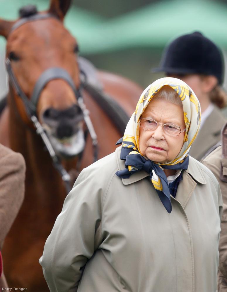 Az Egyesült Királyság uralkodóját szoros kapcsolat fűzi a lovakhoz, korábban ő maga is lovagolt.