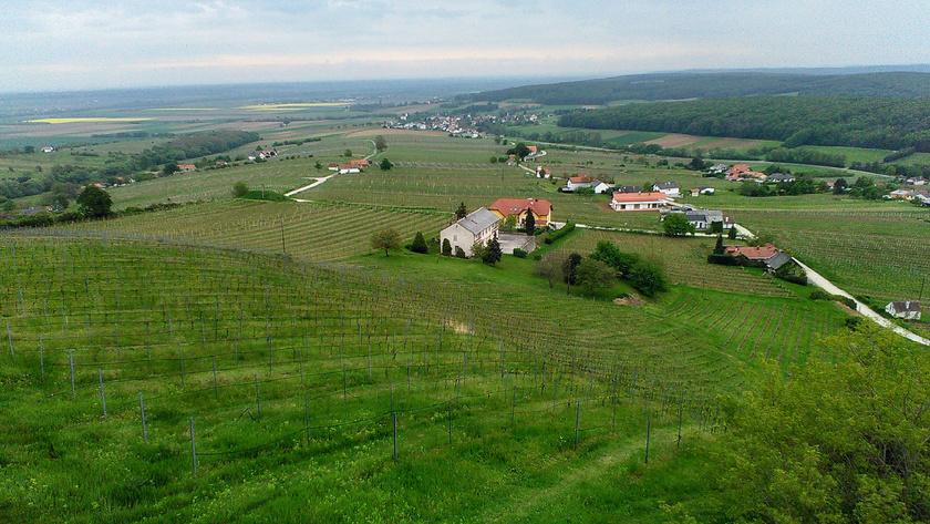 Burgenland napsütötte lankái csalogatnak a kirándulásra