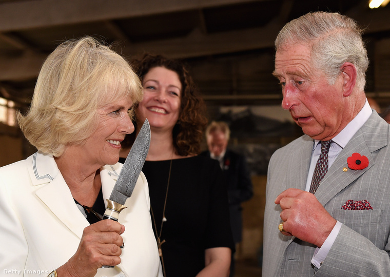 Hasznos, mert ha esetleg beszélgetésbe elegyednénk a Windsor-ház bármely tagjával, tudni fogjuk, mely szavakat kell mindenképpen elkerülnünk, ha nem akarunk magunknak kellemetlen pillanatokat okozni.