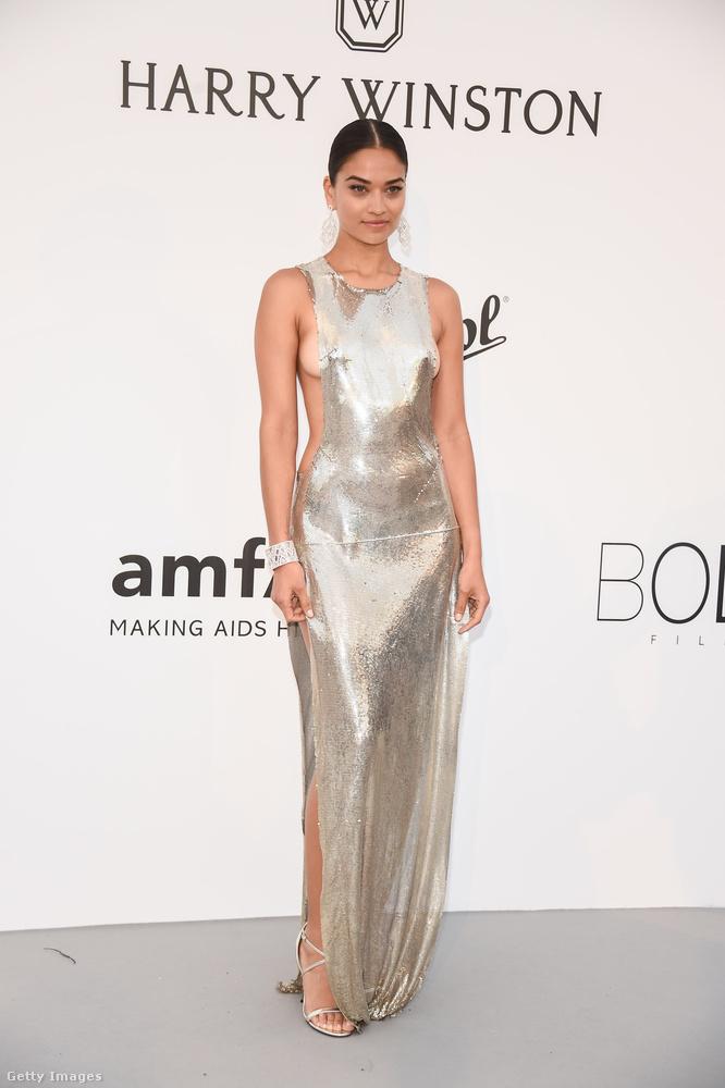 Shanina Shaik egy ausztrál modell, és itt éppen a Cannes-i amfAR-gálára érkezik, ami egy jótékonysági divatesemény az AIDS-kutatás javára