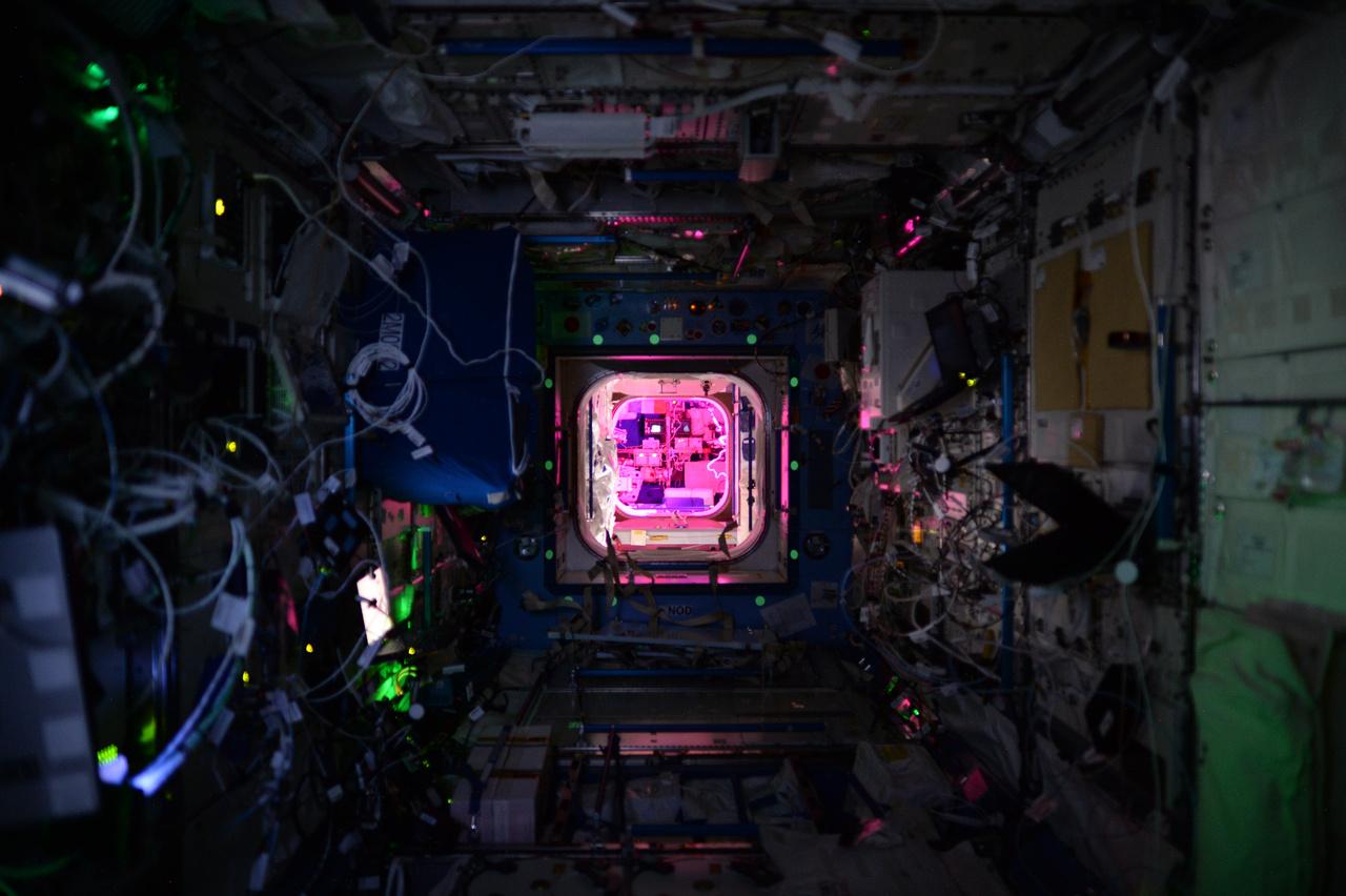 Éjszaka az űrállomáson. A rózsaszín fény a növények növekedéséhez szükséges.