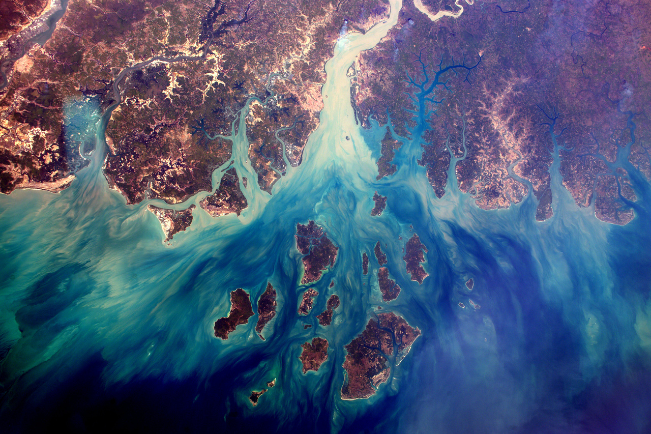 A szenegáli Szalum-folyó deltája.