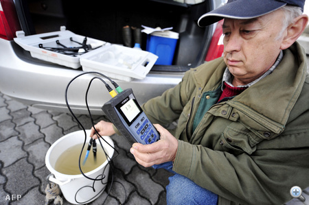Tóth József, a környezetvédelmi hatóság munkatársa a Rábából vett vízmintát elemzi