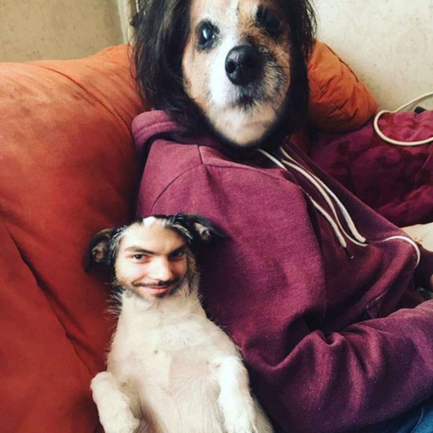 Tóth Gabi fokozta a vicceskedést: ő a párja és a kutyája fejét cserélte meg.