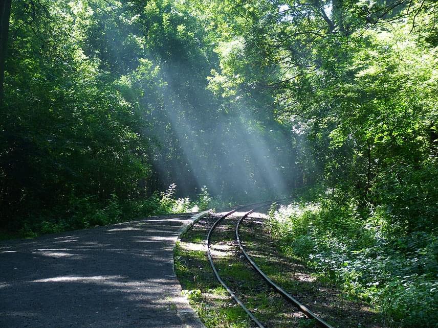 A Duna-Dráva Nemzeti Park talán legszebb része a Gemenci-erdő, ami egyébként Európa legnagyobb erdővel borított ártere. Nemcsak páratlan vadállományáról, valamint madárvilágáról híres, de nosztalgiavonata a gyerekek számára is felejthetetlen élményt jelenthet.