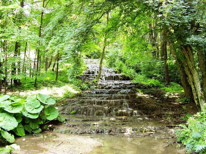 Bár a Szalajka-völgyi erdőség fő látványossága a csodaszép Fátyol-vízesés, az itt áthaladó Szilvásváradi Erdei Vasút, valamint vadasparkja miatt is érdemes ellátogatnod a gyönyörű helyre.