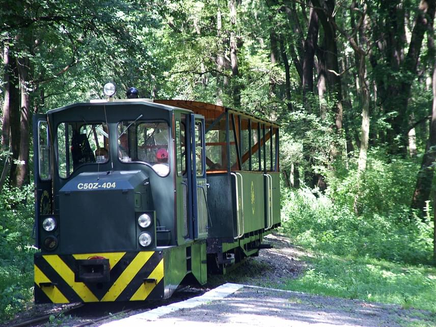 Magyarország és az egész Duna-vonal legnagyobb ártéri erdeje és leggyönyörűbb védett vidéke a Gemenci-erdő. Ezen keresztül kanyarog mintegy 30 kilométer hosszan a Gemenci Erdei Vasút, melynek különlegessége nem csupán az, hogy vonala a páratlan tájon vezet keresztül, hanem az is, hogy egyes nyári hétvégeken a dízelmozdonyok mellett gőzvontatású nosztalgiavonat is közlekedik. Egy útra a viszonylattól függően 600-tól 1350 forintig kaphatsz egy teljes árú jegyet.