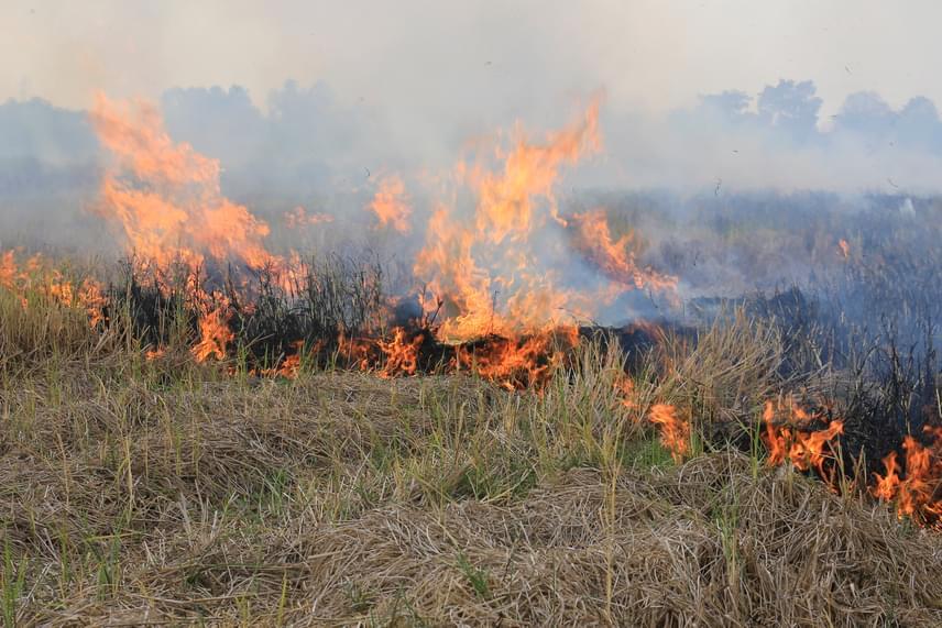 A külterületen való égetést - lábon álló növényzet, illetve például tarlóégetés - előzetesen engedélyeztetni kell a tűzvédelmi hatóságokkal. Fontos tudni e témában azt is, hogy a zártkertek külterületnek minősülnek, így az ilyen ingatlanokra is az utóbbira vonatkozó szabályok érvényesek.