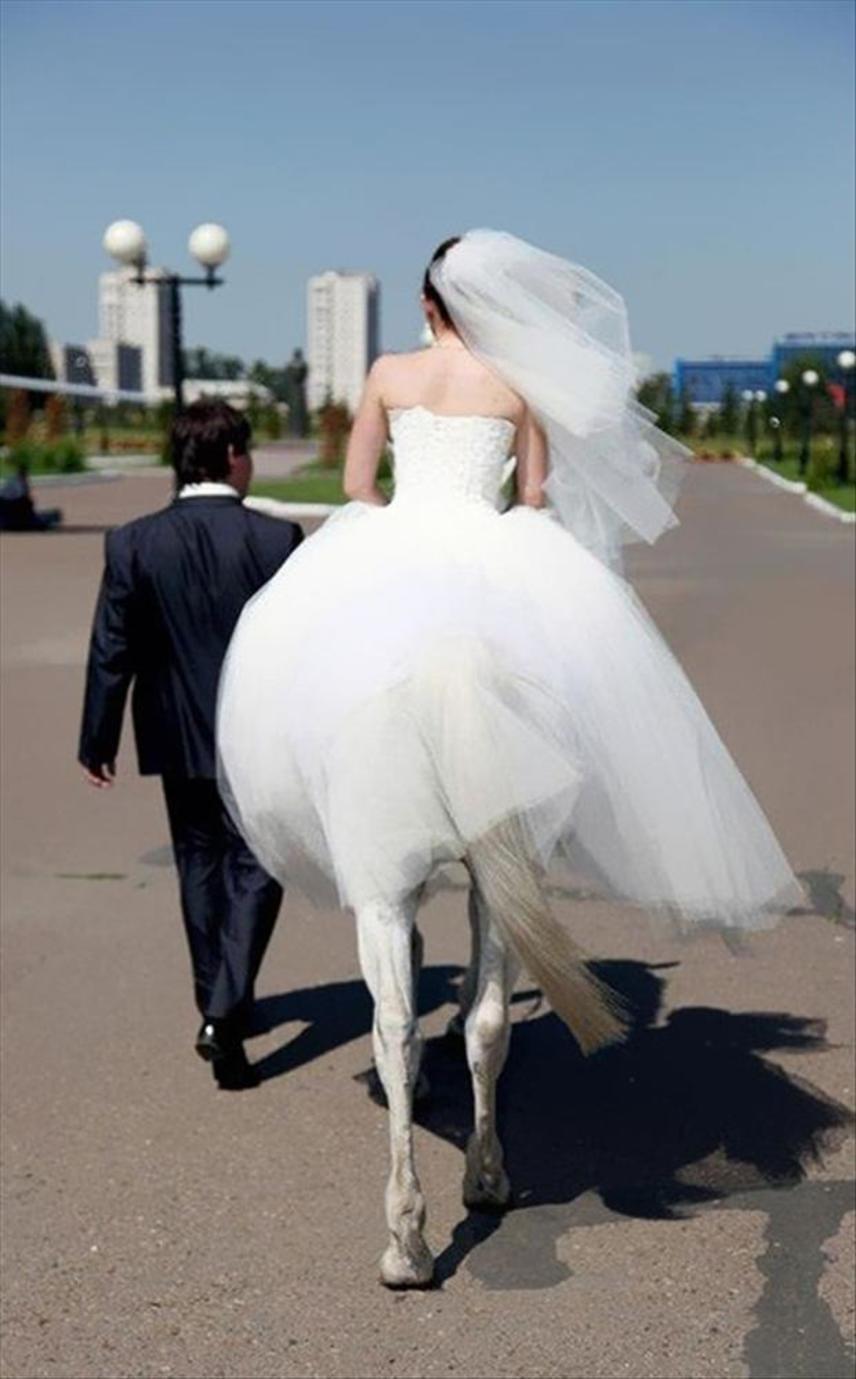 Szerencsés fickó, aki egy ilyen ló nőt vehet feleségül.
