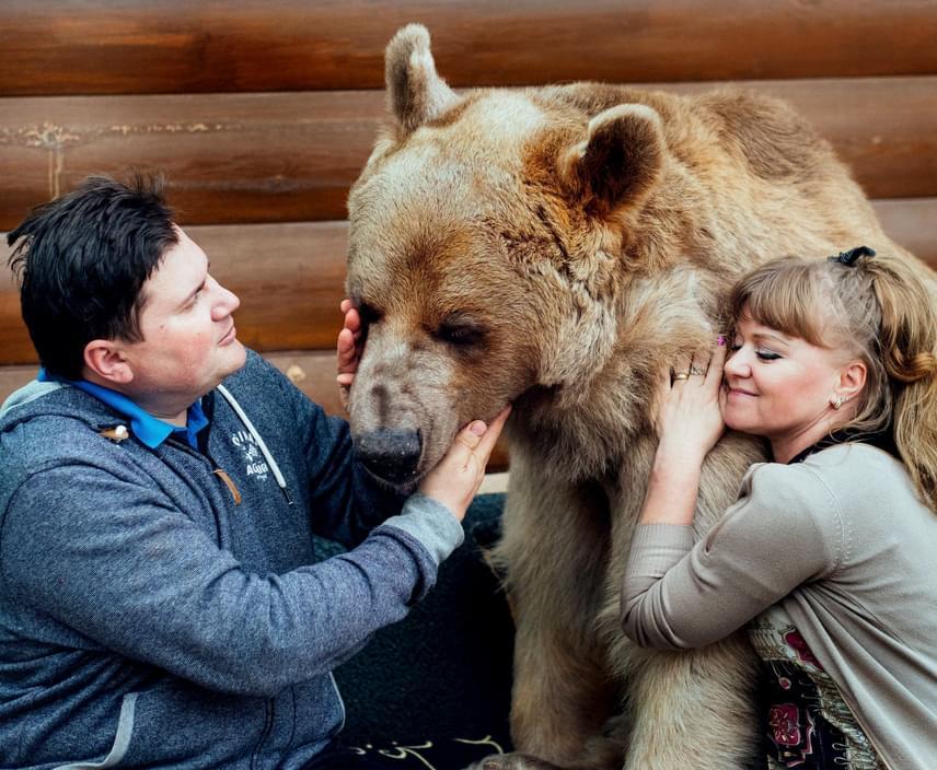 Svetlana és Yuriy elmondták, hogy Stepan soha nem próbálta bántani őket, még egy aprócska harapást sem kaptak tőle a 23 év alatt.
