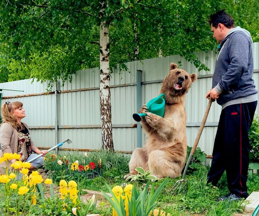 Stepan imád a szabadban lenni, a labdázás mellett az egyik kedvenc elfoglaltsága a kertészkedés.